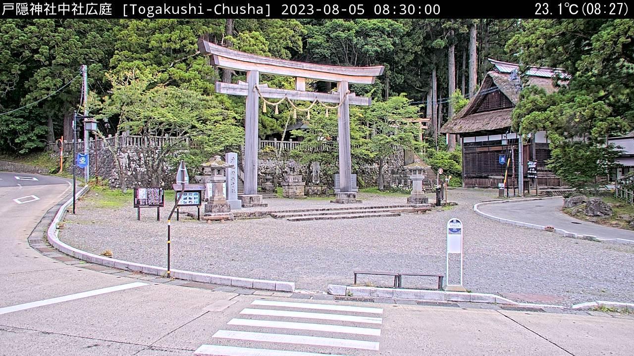 戸隠神社中社広庭最新画像